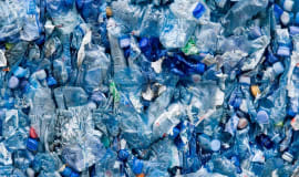 COVID - 19: Is the future more plastic?