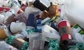Dyrektywa Single Use Plastics w praktyce - PZPTS zabiera głos