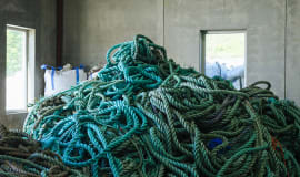 Antibacterial food trays created using fishing industry waste
