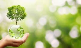 Zrównoważona chemia kluczem do transformacji ekologicznej