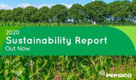 PepsiCo: raport zrównoważonego rozwoju za rok 2020