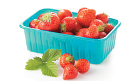 New biocompounds for extrusion and thermoforming
