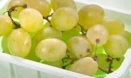 Francja wzmacnia rynek biotworzyw
