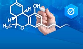 Biomedyczne zastosowanie wybranych materiałów polimerowych