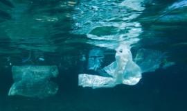 """Na szczycie G7 podpisano """"Ocean Plastics Charter"""""""