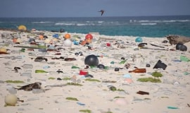 """Unia mówi """"nie"""" plastikowym przedmiotom jednorazowego użytku"""