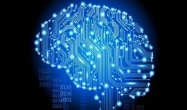 Mózgi na celowniku. W sieci jak w Matrixie