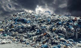 Can the global plastic waste export market be revived?