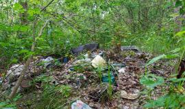Zamiast na wysypiska, śmieci trafiają do lasu