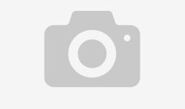 Частицы микропластика обнаружены даже в арктическом снегу