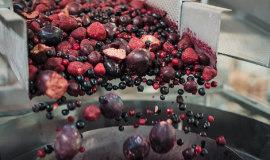 Systemy naważania dla przetwórstwa warzyw i owoców