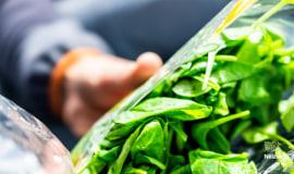 Nestlé schafft Markt für recycelte Kunststoffe in Lebensmittelqualität