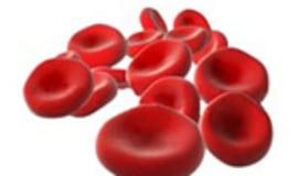 Czerwone krwinki z tworzywa sztucznego