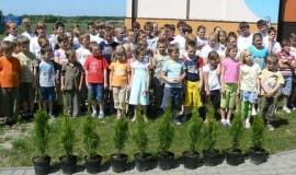 Drzewko za Butelkę: zebrano 2,8 mln sztuk opakowań PET