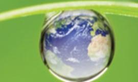 Europejscy przetwórcy odpowiadają na Zieloną Księgę