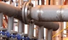 BASF inwestuje w technologię enzymów