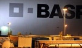 BASF zwiększył zyski mimo niskiego popytu