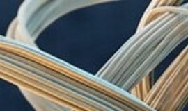 BASF wprowadza PolyTHF z surowców odnawialnych