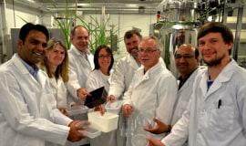 IBERS joins European sustainable packaging initiative