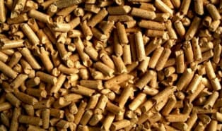 Paliwo i biowęgiel z biomasy?