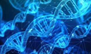 Materiały polimerowe w medycynie: proces weryfikacji
