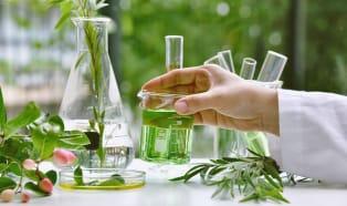 Zielona transformacja przemysłu chemicznego