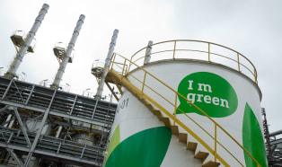Zrównoważony rozwój w brazylijskim wydaniu