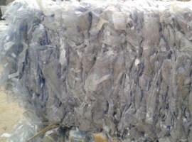 Blister PVC transparent
