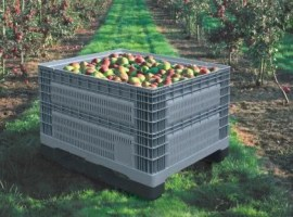 Plastic crates for fruit