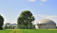 EU develops renewable bio-based