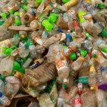 Problemy w recyklingu biotworzyw…