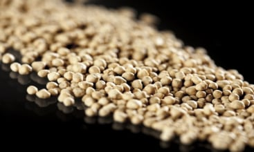 Anwil zwiększy produkcję nawozów