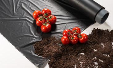 Better soil, higher yield
