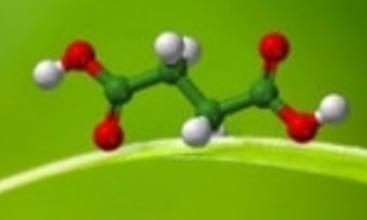Reverdia showcases Biosuccinium