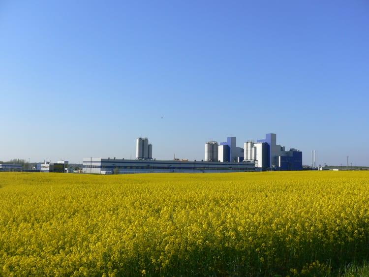 neo-factory