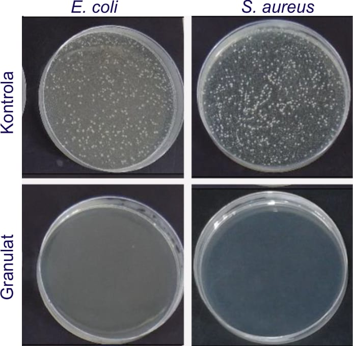 Aktywność antybakteryjna elementu z PP z dodatkiem nanosrebra