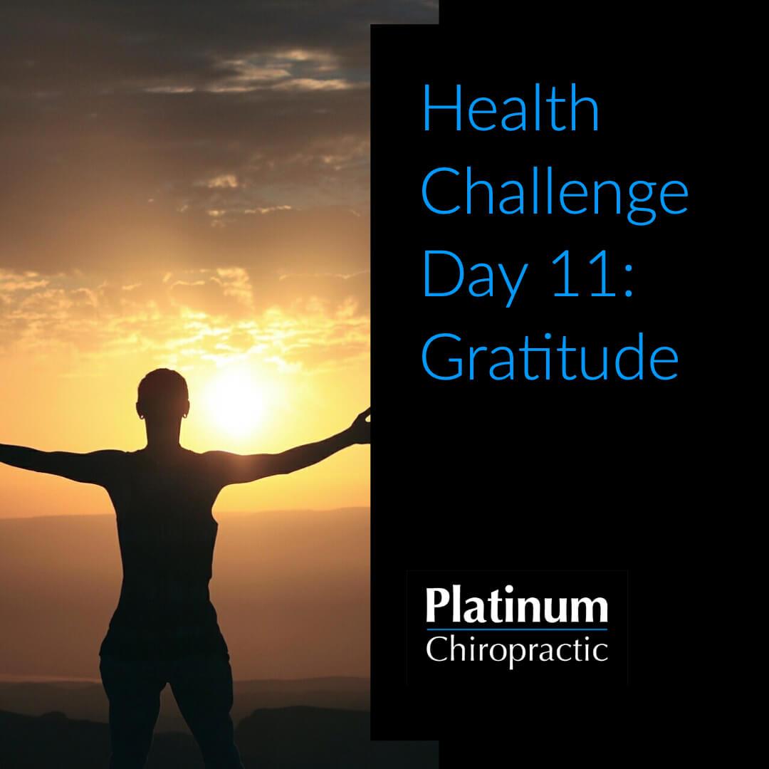Platinum Health Challenge Day 11: Gratitude