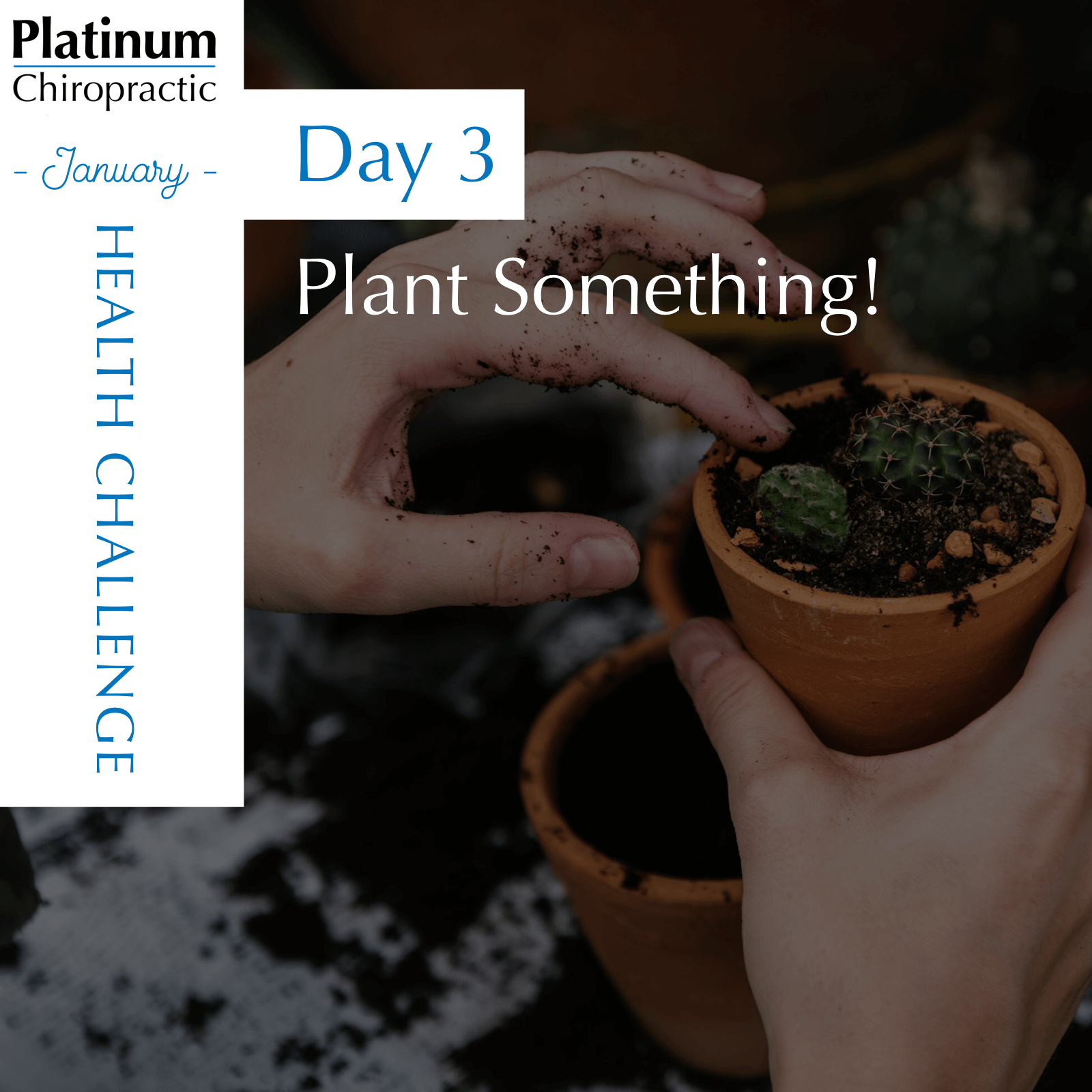 Day 3 of our Patient Appreciation Challenge, plant something. Stop by the office for a gardening kit.