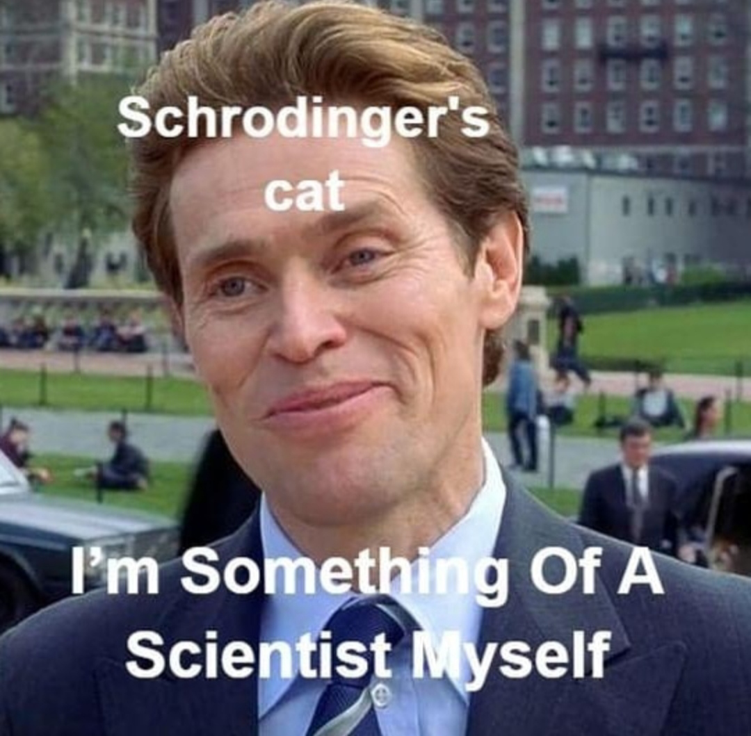 Scrodinger's cat made a good contribution to science 😄