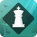 Magnus Trainer app icon