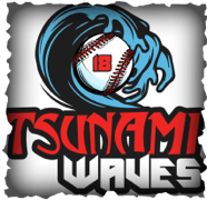 Tsunami Waves Foundation