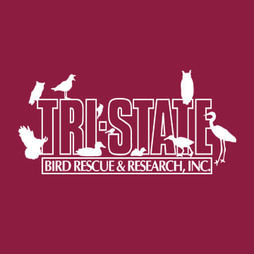 Tri-State Bird Rescue & Research