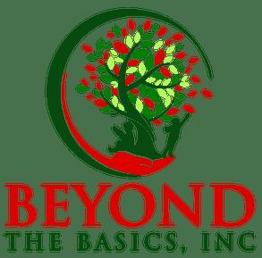 Beyond the Basics Inc.