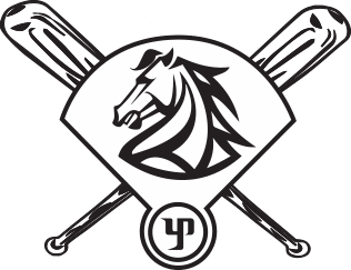 The Wild Horse Children's Foundation