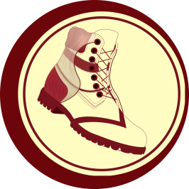 Images%2fnpos%2flogos%2fshyxkvnysugrc12h2vip logo new 1