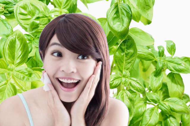 4 Manfaat Daun Kemangi Untuk Kecerahan Kulit Wajahmu