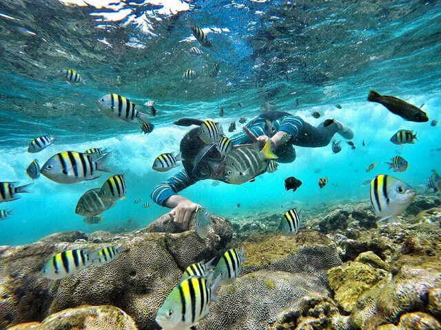Snorkeling in Nglambor Beach