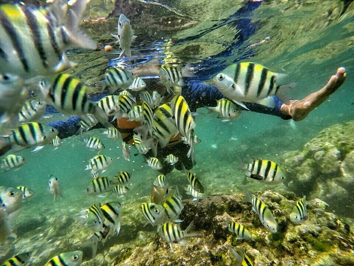 Snorkeling in Nglambor Beach.