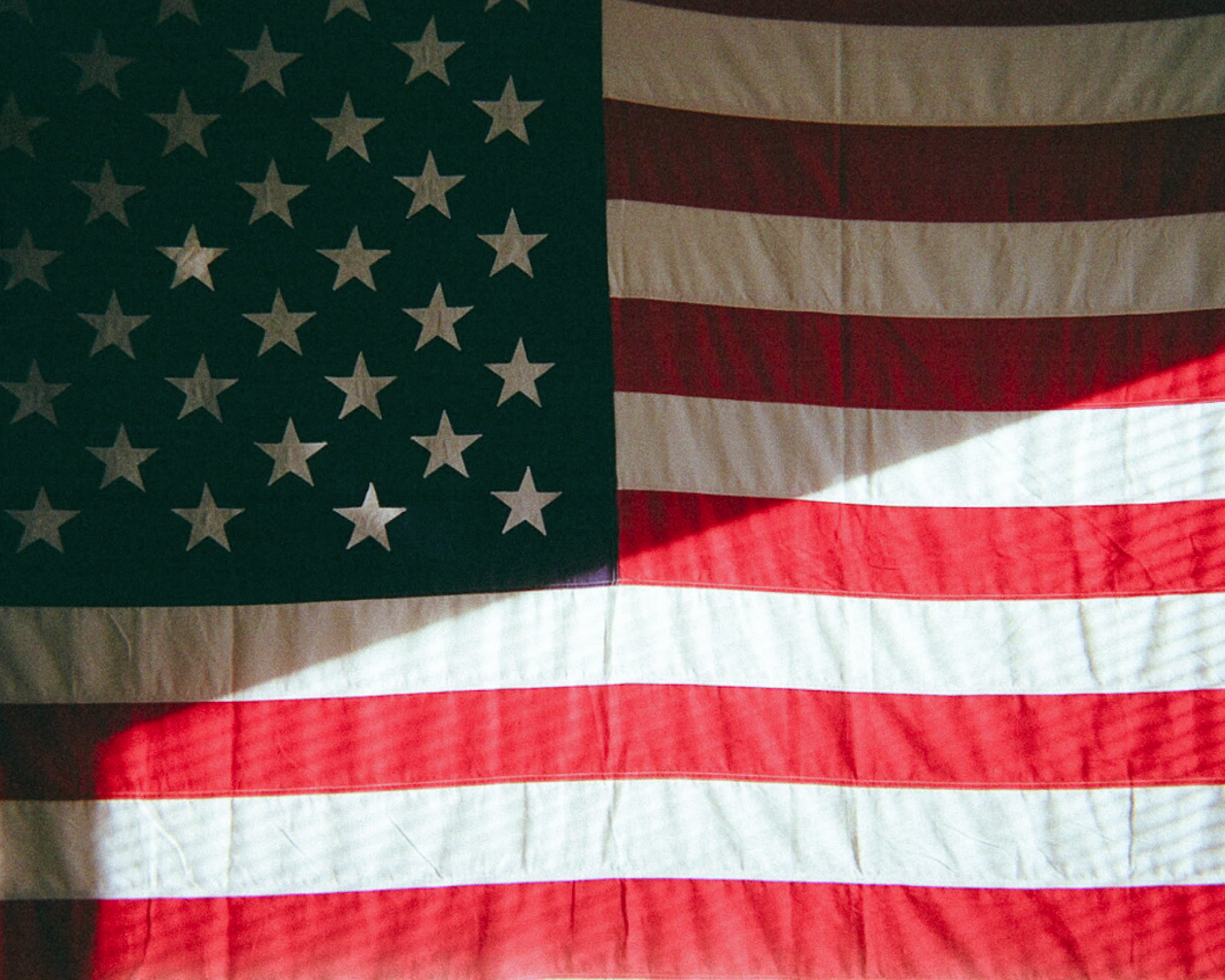 Cavalier american flag photo