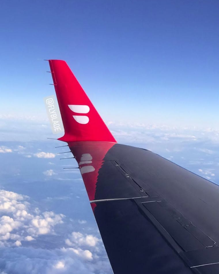 Blade plane wing